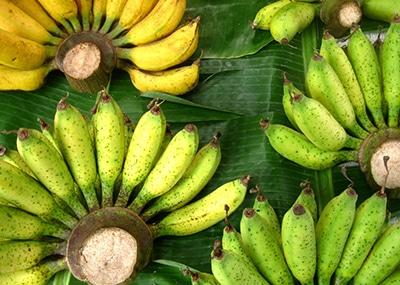 bananovai-ferma
